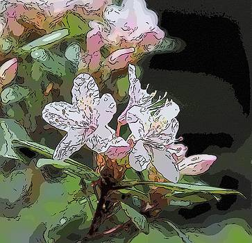 Sweet Azalea 2 by Cathy Lindsey
