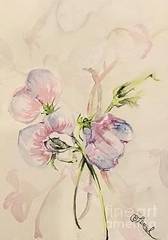 Sweet Pea I by Laurel Adams