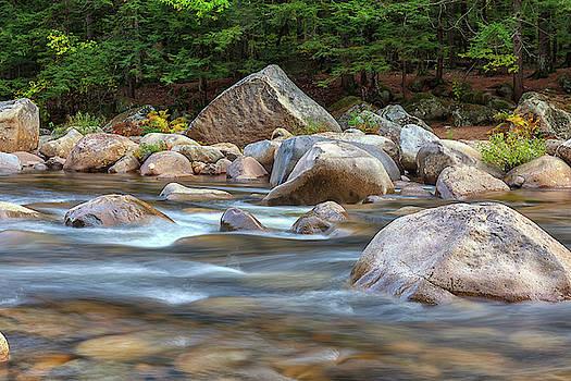 Cliff Wassmann - Swift River Rapids II