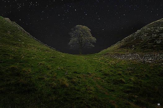 Sycamore Gap Stars by John Meader