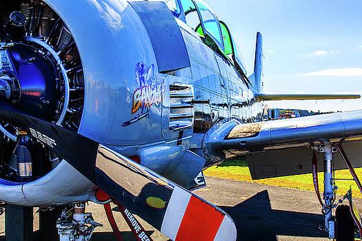 T-28B Trojan Banshee  by Doug Camara