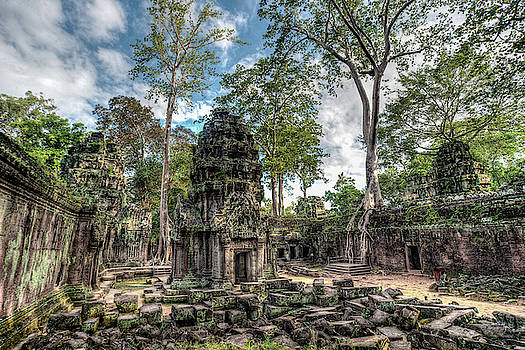Ta Prohm temple inside Angkor complex, Cambodia. by Ian Robert Knight