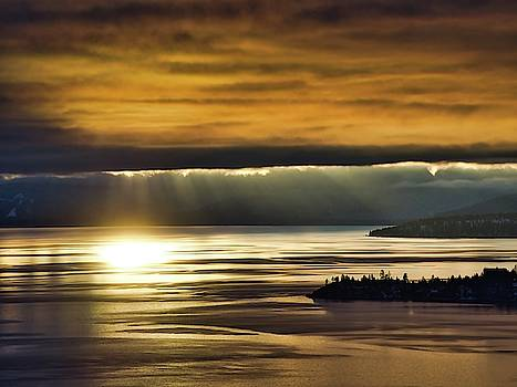 Tahoe Gold by Martin Gollery