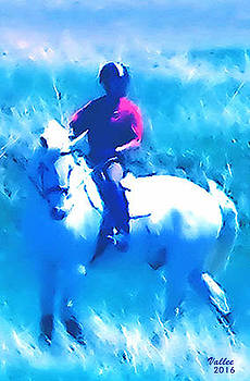 Taming the White Stallion by Vallee Johnson