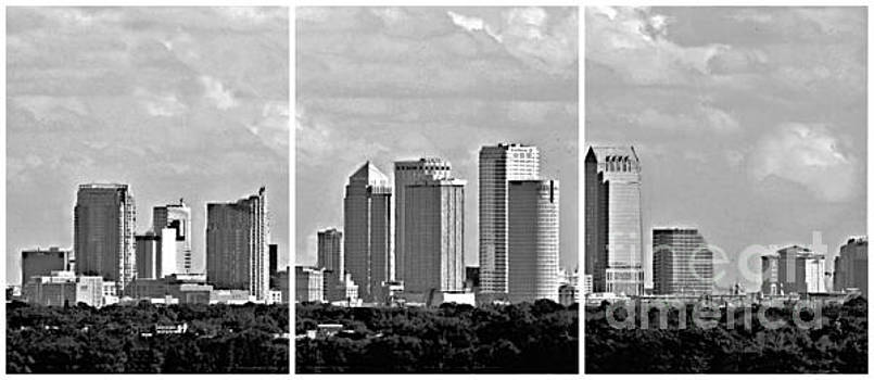 Diann Fisher - Tampa Cityscape Triptych BW