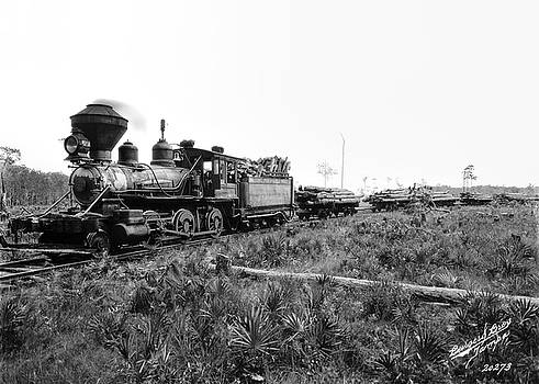 Daniel Hagerman - TAMPA FLORIDA LOGGING TRAIN