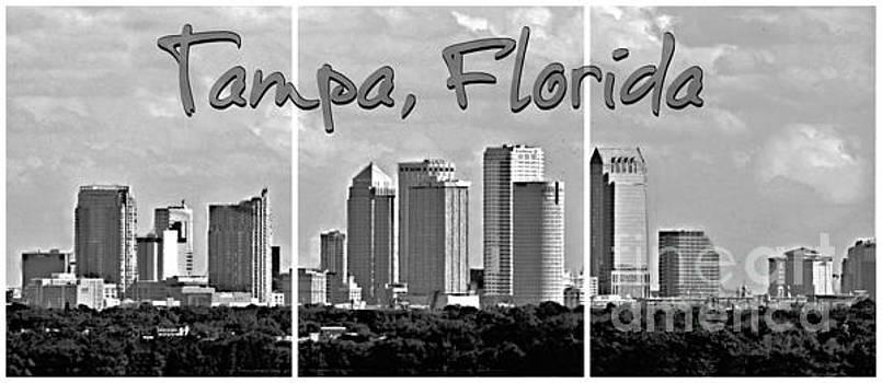 Diann Fisher - Tampa Florida Triptych BW