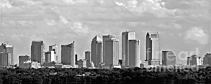 Diann Fisher - Tampa Skyline Panoramic BW