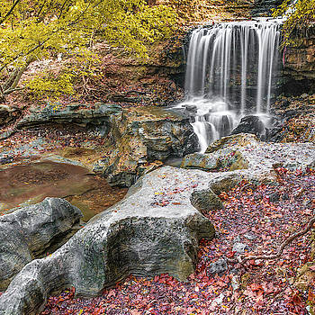 Tanyard Creek Waterfall in Autumn - Square Format by Gregory Ballos