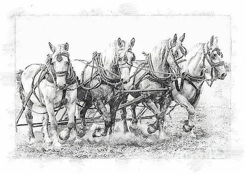 Team Work 2 by Brad Allen Fine Art