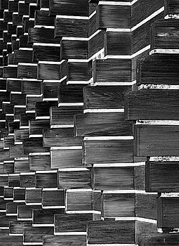 Technocratic Wall by William Selander