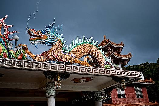 Temple Dragon by Russ Barneveld