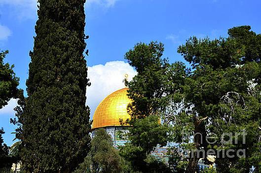 Temple Mount 2 by Del Art