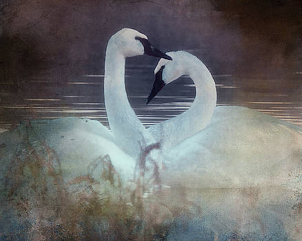 Rosette Doyle - Tender is the Heart
