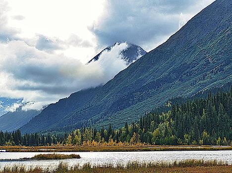 Tern Lake, Alaska by David Frankel