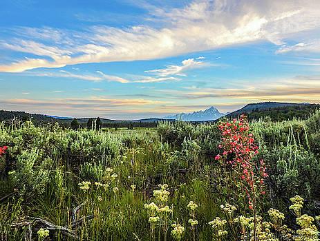 Teton sunest by Teri Ridlon