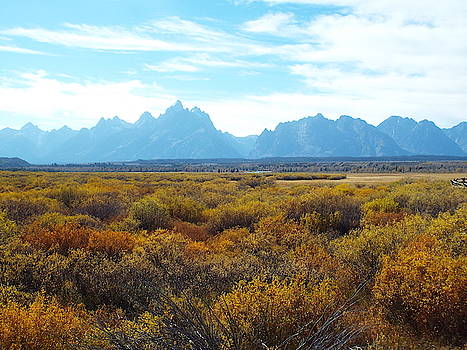 Tetons in October by Gilbert Pennison