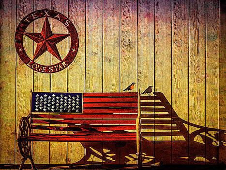 Texas by Paul Wear