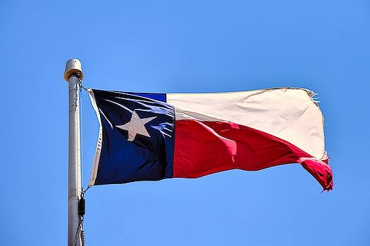 Texas State Flag by Chance Kafka