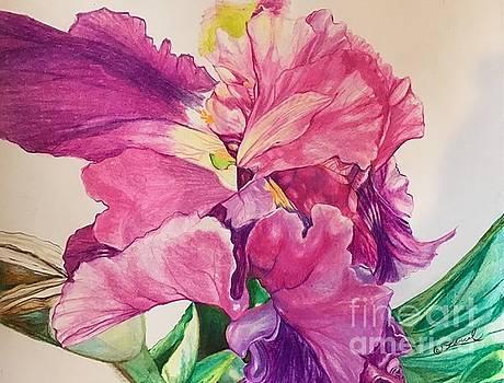 Textures Emergent by Laurel Adams
