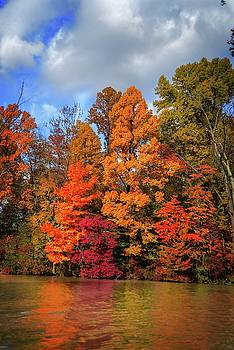 Thankful Autumn Colors by Mary Timman