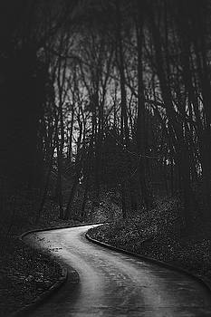 That Lonesome Road by Scott Norris