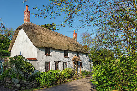 David Ross - Thatched Cottage, Church Cove, Cornwall
