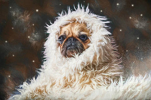 The Abominable Pug by Tina LeCour
