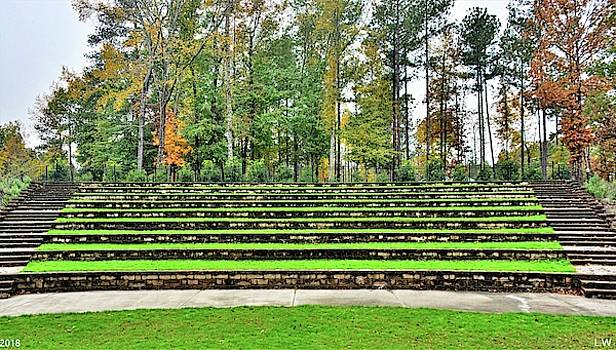 The Amphitheater Steps At Irmo SC Community Park by Lisa Wooten