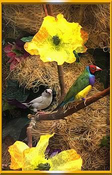The Aviary by Lenore Senior
