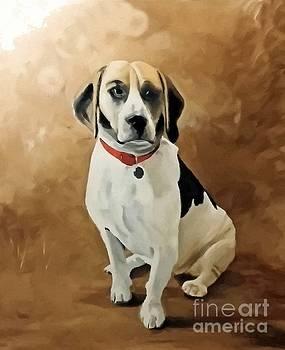 Abbie Shores - The Beagle