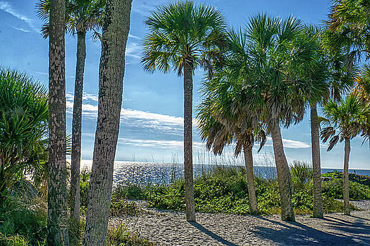 The Besy Of Florida by Dennis Dugan