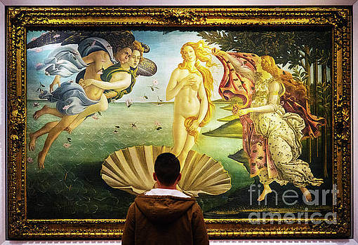 Wayne Moran - The Birth of Venus Sandro Botticelli Uffizi Gallery Florence Italy