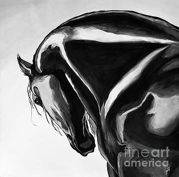 The Black by Suzette Kallen