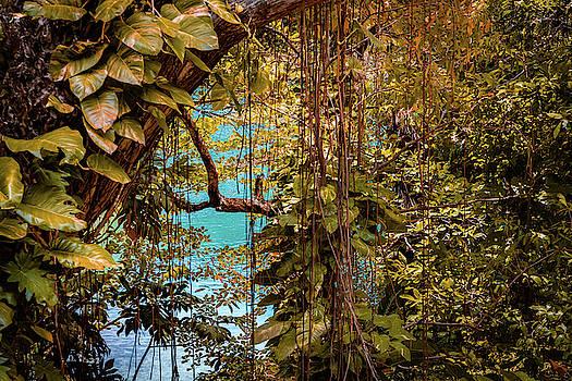 The Blue Lagoon by Debbie Ann Powell