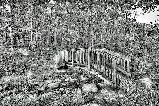 Dawn J Benko - The Bridge At Sawmill