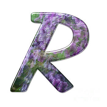 The Capitol Letter R j by Humorous Quotes