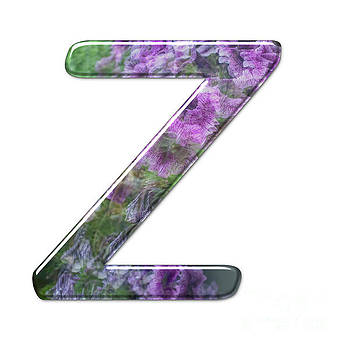 The Capitol Letter Z j by Humorous Quotes