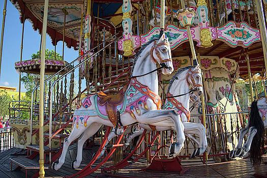 The Carousel Horses In Skanderbeg Square by Lucinda Walter