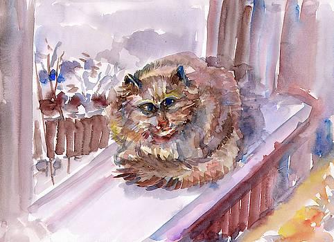 The cat is sitting on the windowsill by Dobrotsvet Art