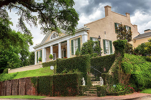 The Cherokee House - Natchez, Mississippi by Susan Rissi Tregoning