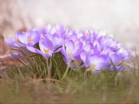 The Earth Blooms 2 by Jaroslav Buna