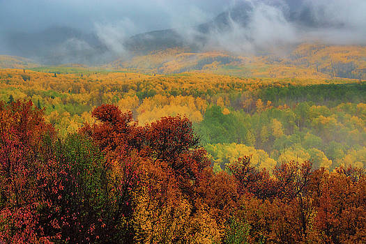 The Feeling Of Fall by John De Bord