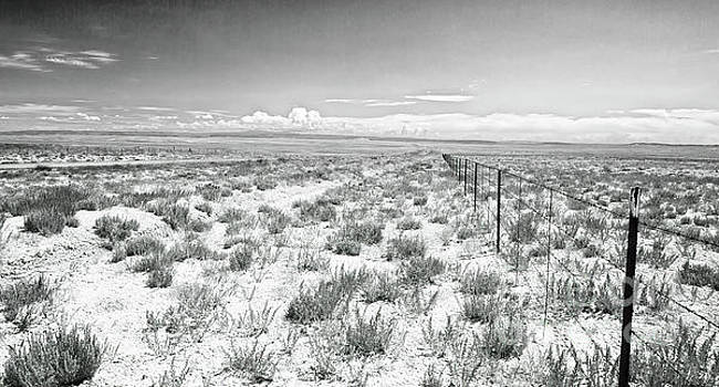 The Fence, Desert Plain Of New Mexico by Felix Lai