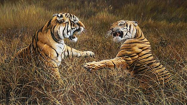 The Fight - Tigers Feud by Alan M Hunt by Alan M Hunt