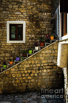 The Flower Pots by Mitch Shindelbower