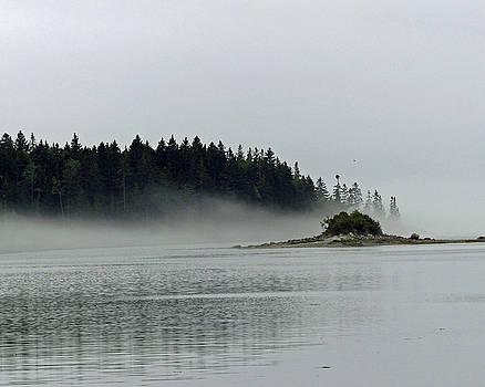 The Fog Lifts by Carl Sheffer