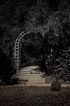 Michael Nguyen - The gate to light and shadow