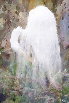 The Ghost Heron by David Derr