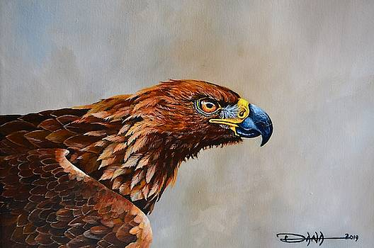 The Golden Eagle by Dana Newman